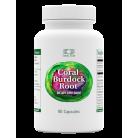 Coral Burdock Root 90 Capsules